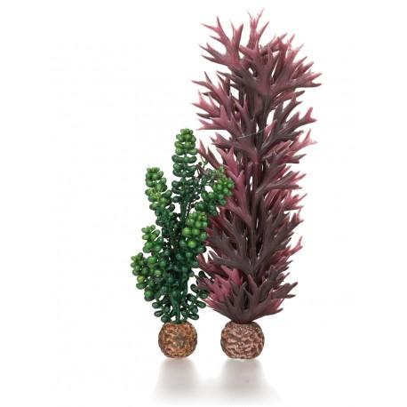 biOrb Seapearls & Kelp Small 19cm