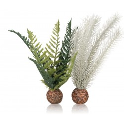 biOrb Thistle & Fern Plant Set 19cm