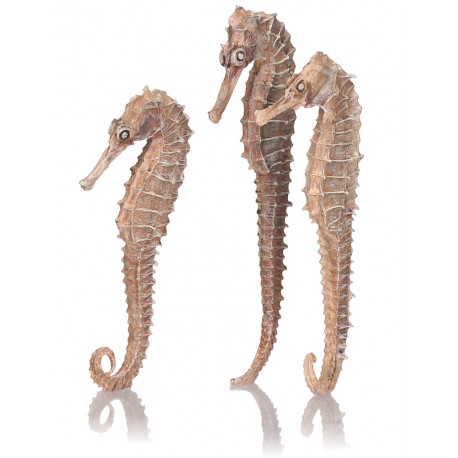 biOrb Seahorse Decoration Natural 3-Pack