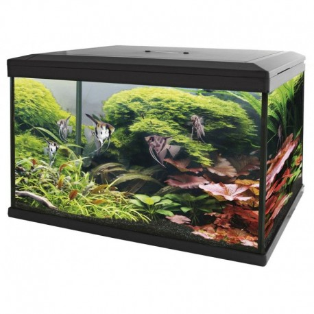 SuperFish Aqua Expert 70 Aquarium Black