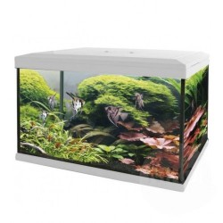 SuperFish Aqua Expert 70 Aquarium White