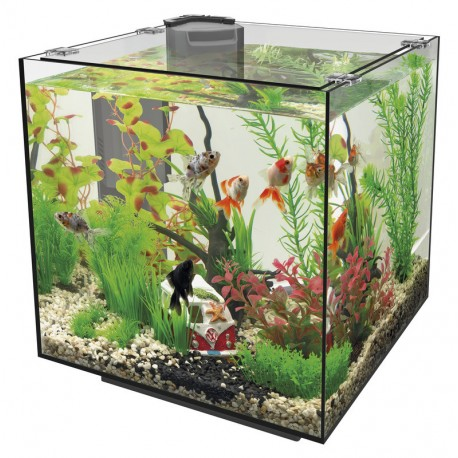 superfish qubiq 30 black 30l nano cube aquarium with filter. Black Bedroom Furniture Sets. Home Design Ideas