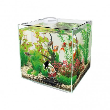 Superfish QubiQ 30 White