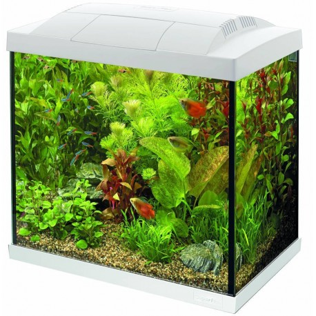 Superfish Start 30 Tropical Tank Set (25L) White