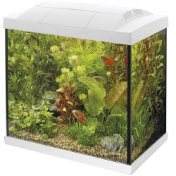 Superfish Start 50 Tropical Tank Set White