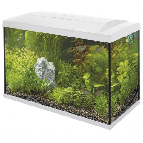 Superfish Start 70 Tropical Tank Set White