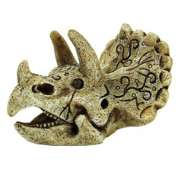 Superfish Skull Triceratops S
