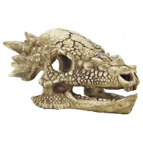 Superfish Skull T-Rex M