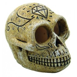 Superfish Skull Monkey