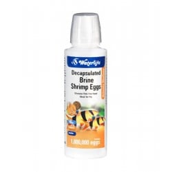 Waterlife Shell-less Brine Shrimp Eggs 100ml