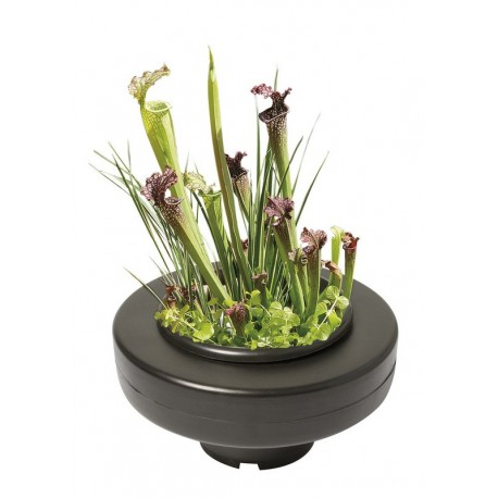 Superfish Floating Pond Basket 22cm