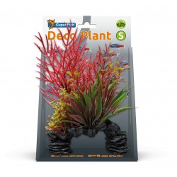 Superfish Deco Plant Kit Ludwigia Small