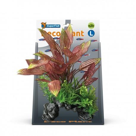 Superfish Deco Plant Kit Henkelianus Large