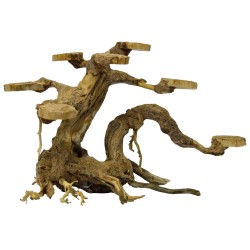 Bonsai Driftwood Planter S 23x12x15cm