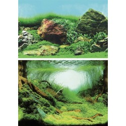 Superfish Deco Poster C6 150x61cm