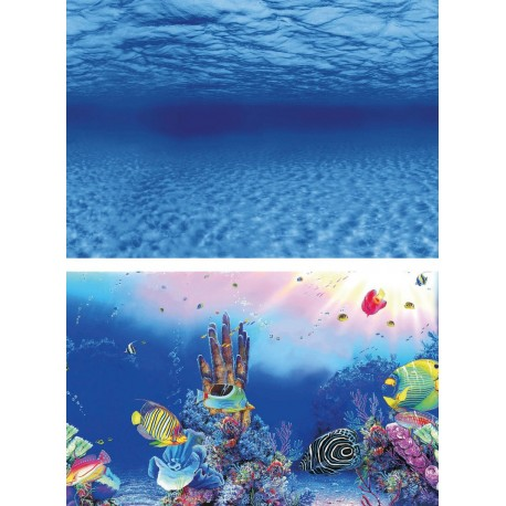 Superfish Deco Poster F1 60x30cm