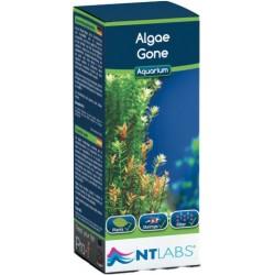 NT Labs Algae Gone 100ml