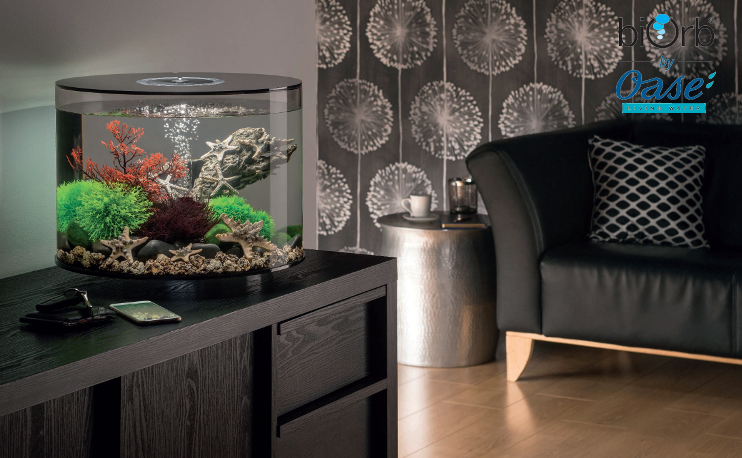 biOrb Tube Aquariums